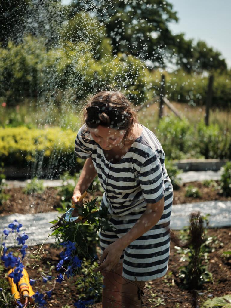 Growing British Flowers - Wetherly